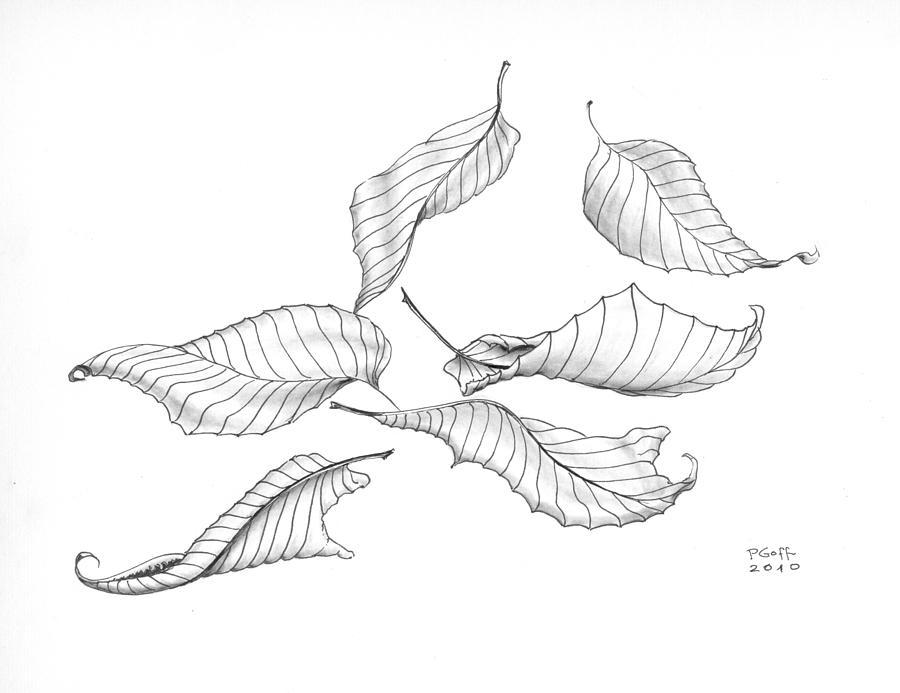 Drawn leaves pattern Penrith Goff by Goff Leaf