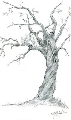 Drawn spirit twisted Inspiration in initials old/dead Tree