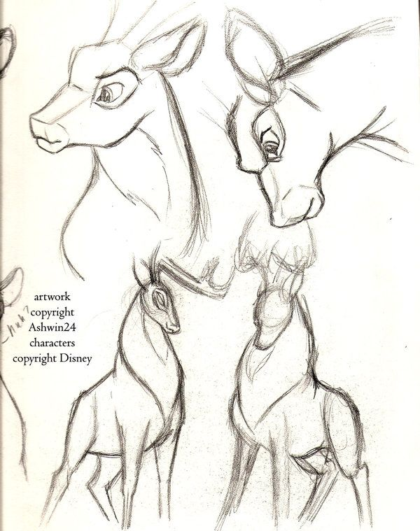 Drawn stag cartoon Best by Pinterest on Deer