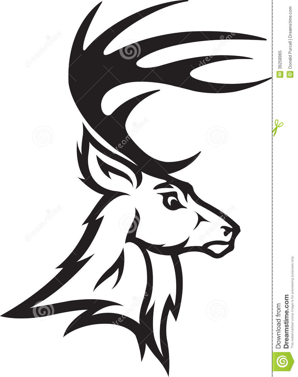 Drawn dear black and white Tail Vector White images head