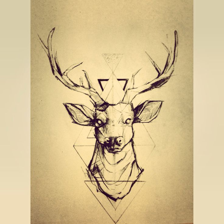 Drawn stag hipster Deer Best Pictures tattoo Pictures