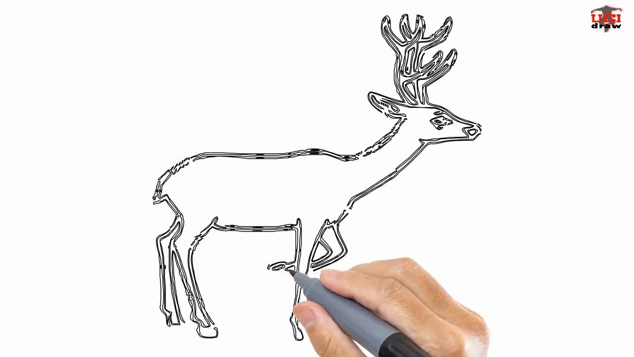 Drawn reindeer easy draw Step Easy a to Step