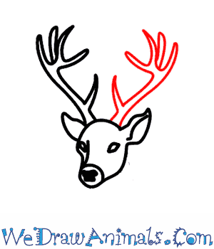 Drawn reindeer beginner To Deer Tutorial Print How
