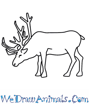 Drawn reindeer easy Reindeer  To How A