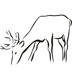 Drawn stag drinking water Ideas Details Pinterest More Sticker