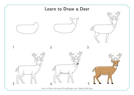 Drawn reindeer step by step Draw Learn to  Animals