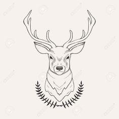 Drawn buck deer head And Deer Vintage Deer Illustration