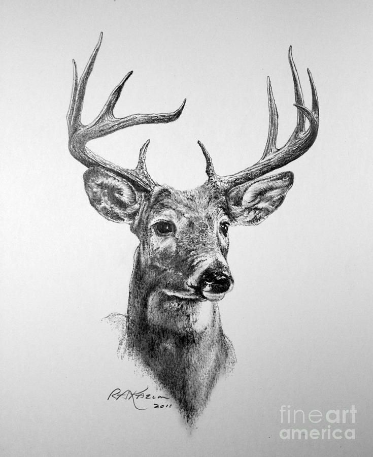 Drawn buck monster Fine images Print Art Drawing