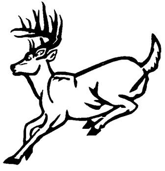 Hunting clipart whitetail deer #8