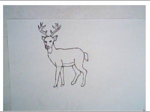 Drawn reindeer easy draw Tutorial) draw How (simple deer