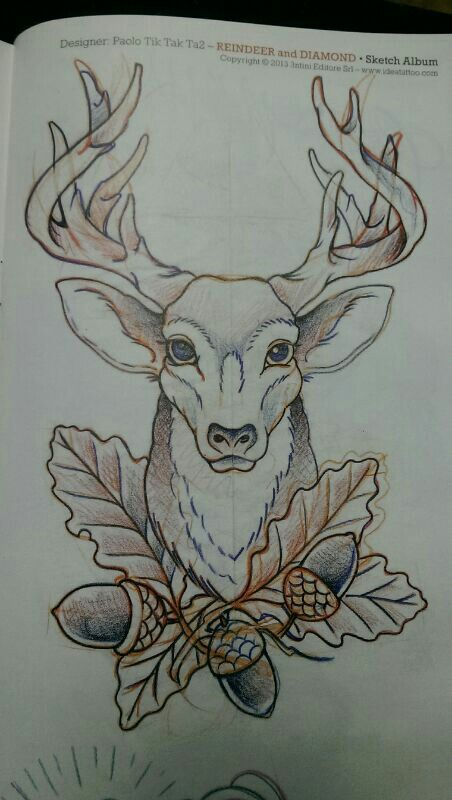 Drawn stag traditional Design like tattoo Stag lil
