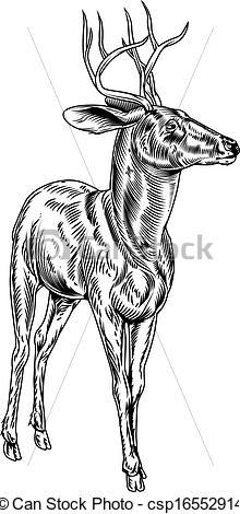 Drawn buck woodcut Vintage Clip style deer Art