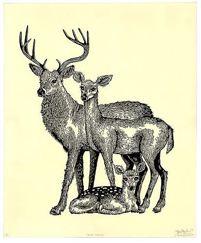 Drawn buck woodcut X Deer Family