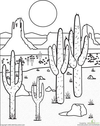 Drawn desert Desert the on Landscape biome