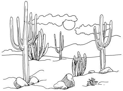 Drawn desert 4 Draw to Cacti Cacti