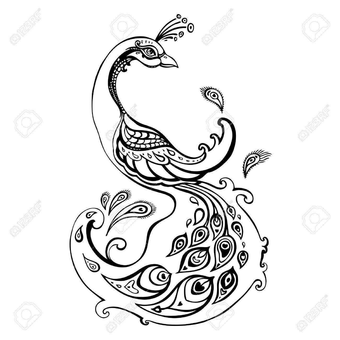 Drawn peacock decorative 27457379 drawn Hand 27457379 Beautiful