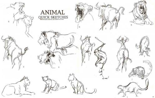 Drawn animl animation For Drawing Inspirational Animal derived