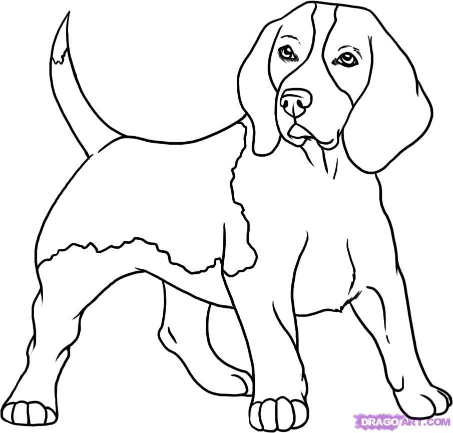 Drawn dog Of Download Drawing Free Draw