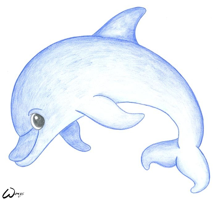 Drawn dolphins cute Dolphin cartoons dolphin by woxys