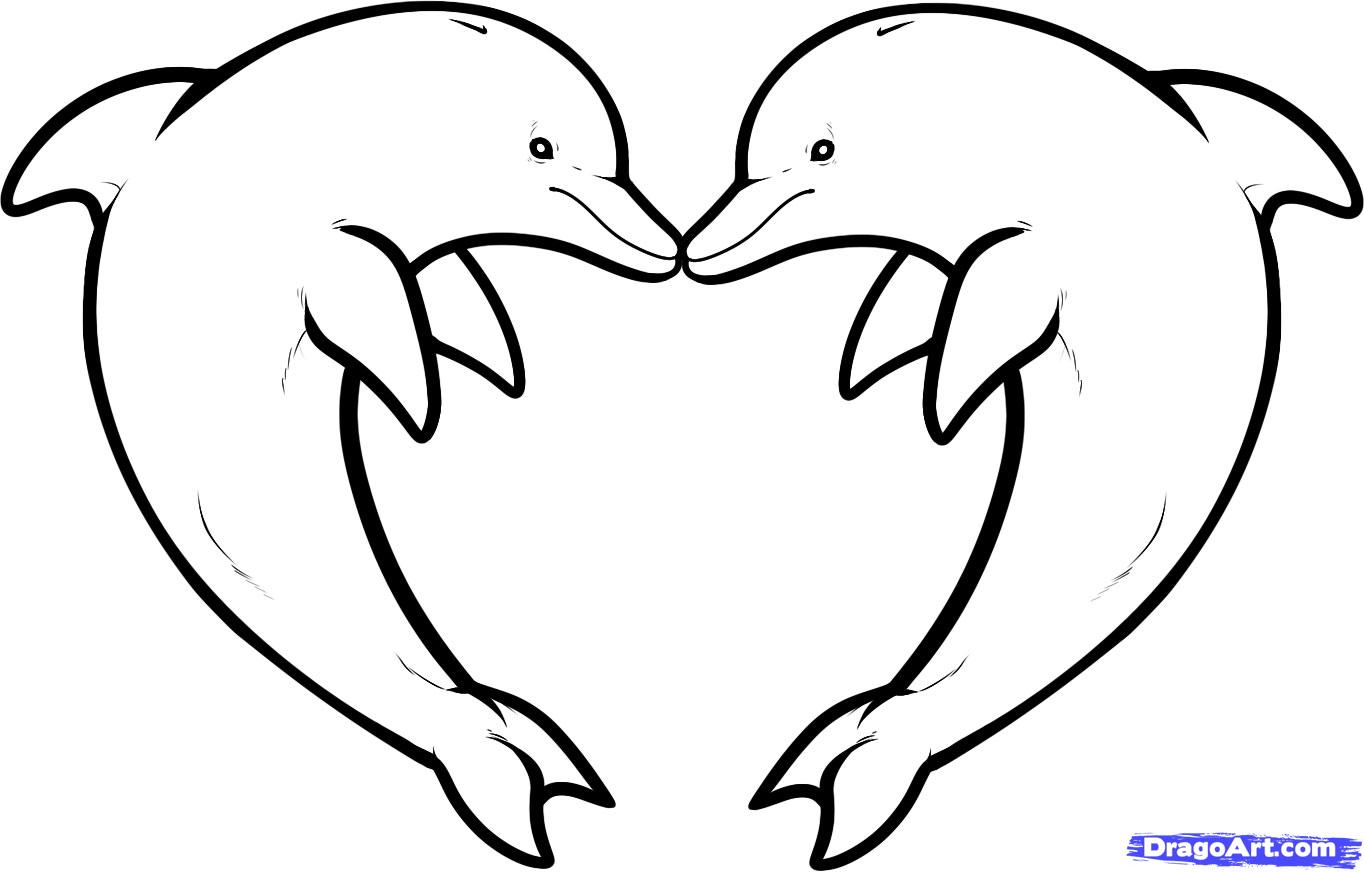Drawn dolphins  love Love Dolphin how