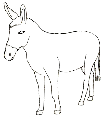 Drawn donkey How Step draw to 5