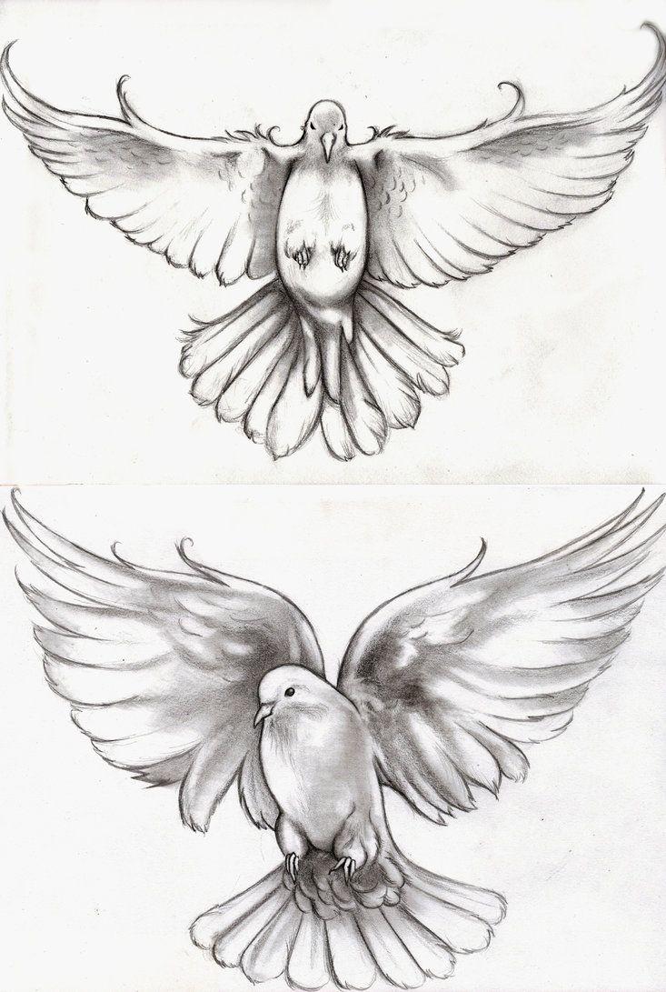 Drawn dove Dove Dove Tattoo bottom idea