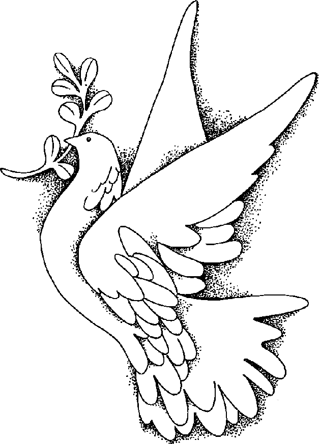 Peace Dove clipart line drawing #11