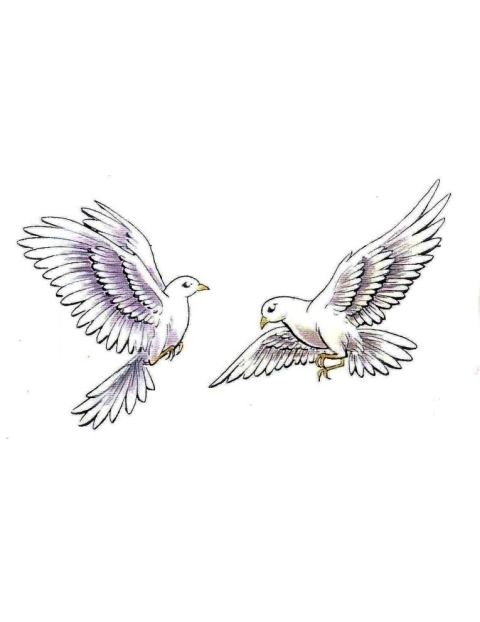 Turtle Dove clipart flight sketch #4