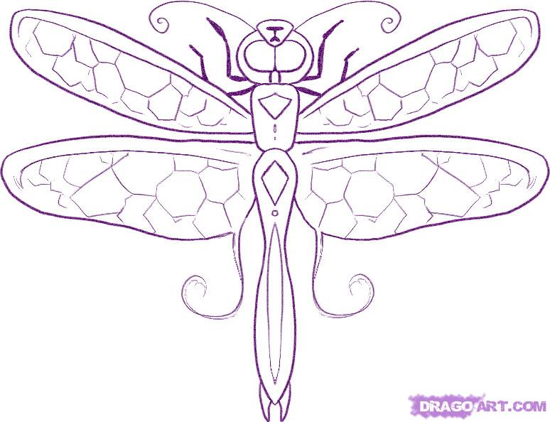 Drawn dragonfly How How dragonfly to draw