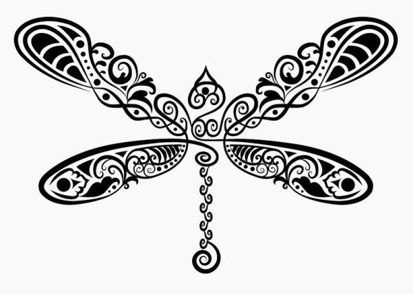Drawn dragonfly Hand drawn Pattern drawn Dragonfly