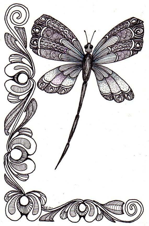 Drawn butterfly dragonfly Dragonfly illustration original Ink about