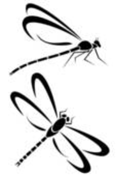 Simple clipart dragonfly Cute%20dragonfly%20clipart Clipart  Panda White