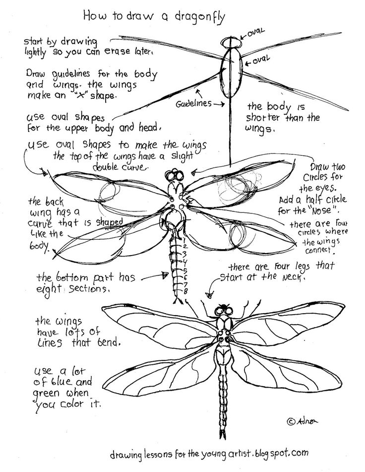 Drawn samurai dragonfly Worksheets painting The To 25+
