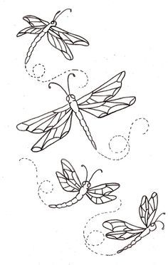 Drawn butterfly dragonfly On 79 2 about butterflies