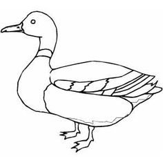 Drawn duckling To Style draw Duck a