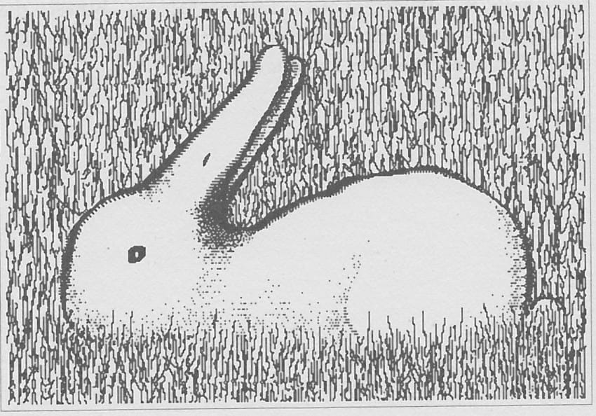 Drawn rabbit the duck Picture? YOU Technically reversible at