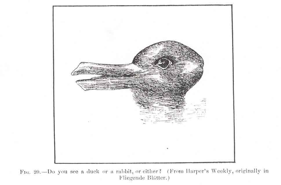 Drawn rabbit psychological Duck Rabbit JastrowDuckPopSci (39148 bytes)