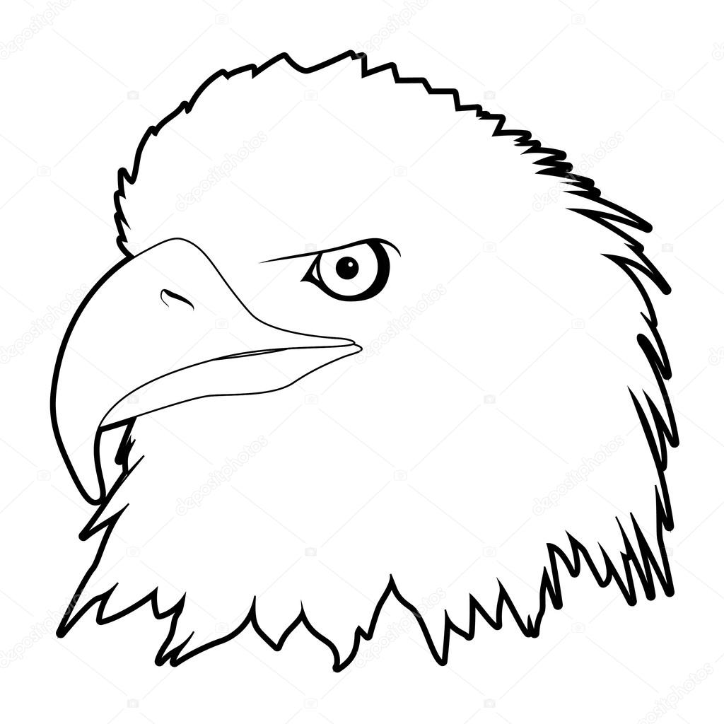 Drawn eagle Eagle — Chisnikov head #5620601
