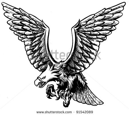 Drawn eagle 126 photo stock Drawing eagle
