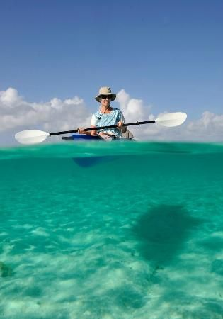 Drawn eiland grand cayman Find Pinterest and Little more