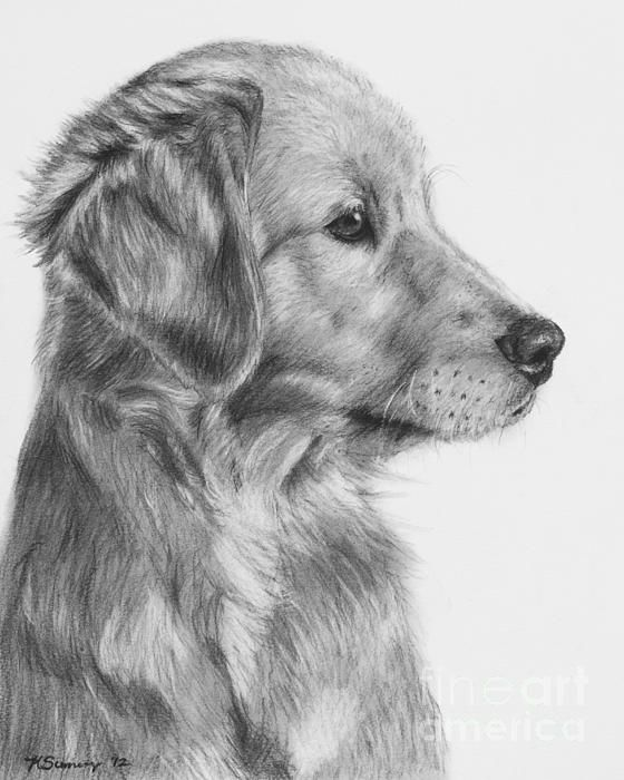 Drawn eiland realistic Charcoal in Puppy Art Pinterest