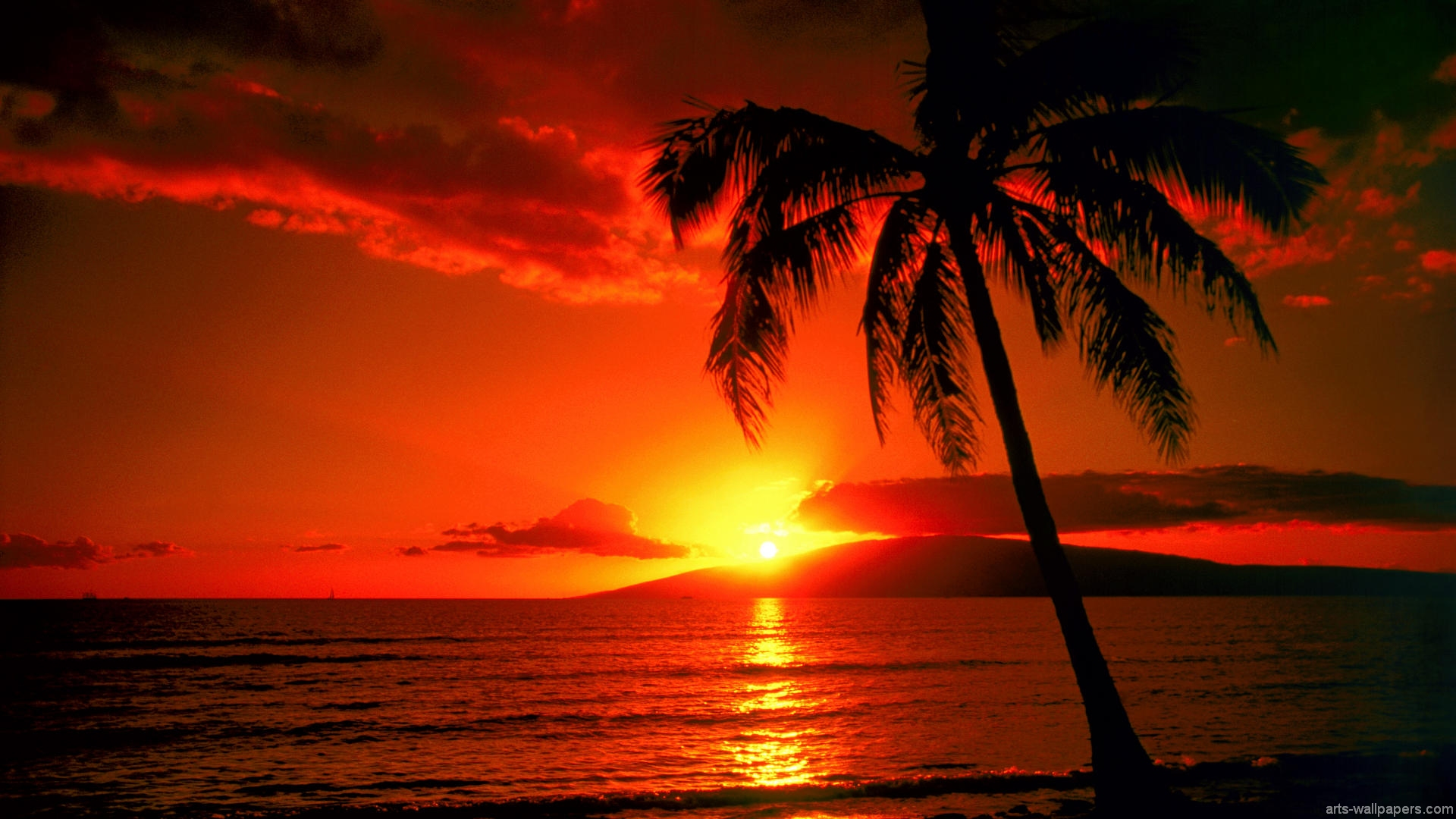 Drawn eiland sunset Paradise Sunset Island Tropical Tropical