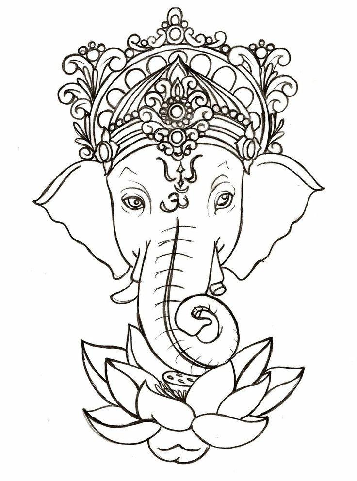Drawn head indian elephant Draw Pinterest 29 Google on