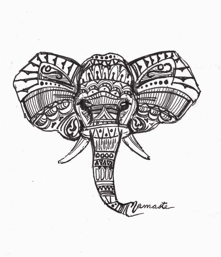 Drawn braid insect Best ideas Simple 25+ elephant