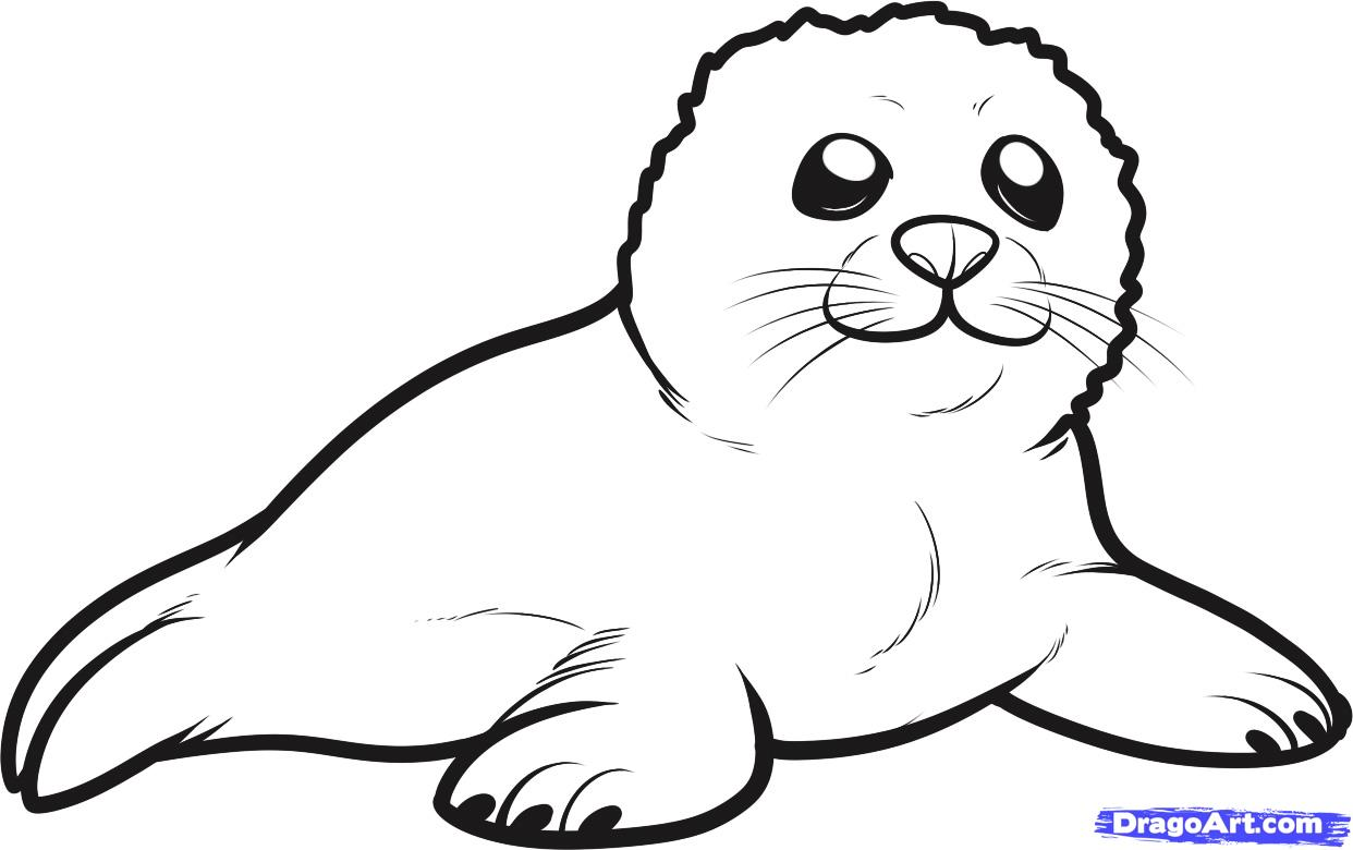 Drawn seal A a draw Sea seal