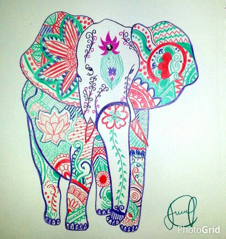 Drawn triipy elephant Pinterest 438 Parade Pink images
