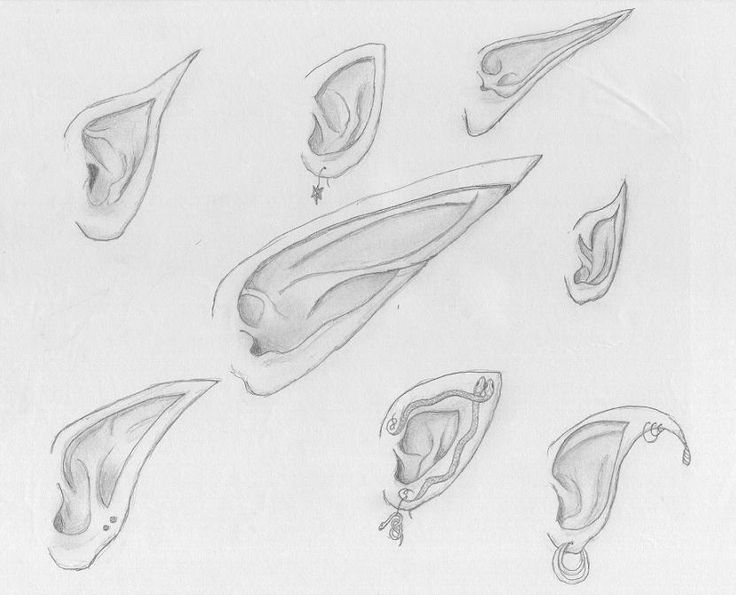 Drawn fairy elf ear Elves since character a there