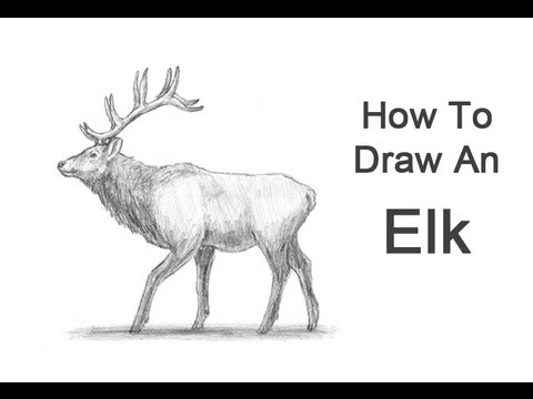 Drawn elk Draw Elk to Draw How