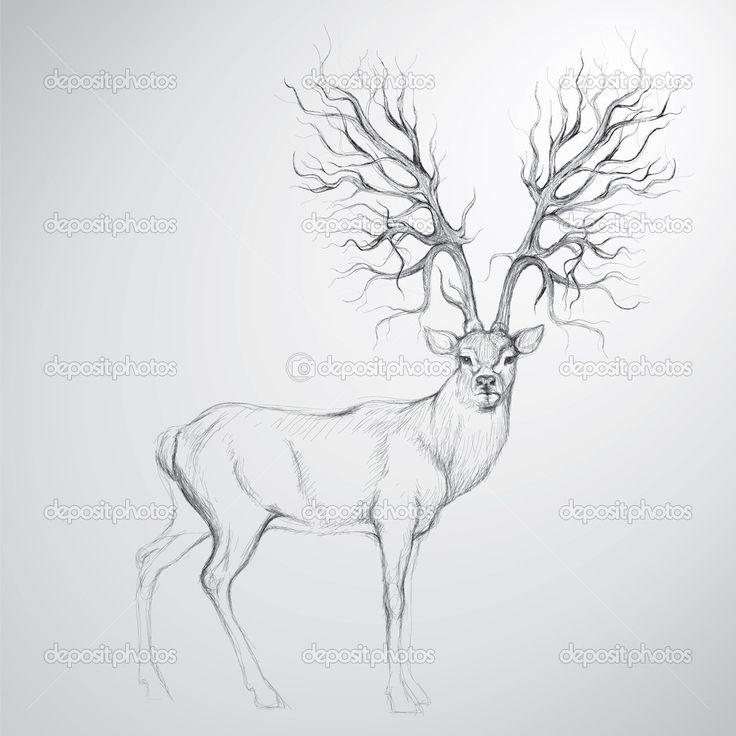 Drawn stag deer antler Antlers 31 tree Deer best