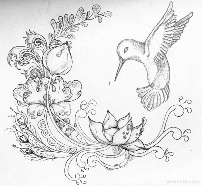 Drawn hummingbird japanese Flowers Drawing flowers  drawing